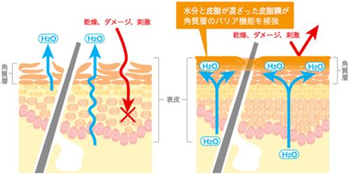 体内の水分を利用した保湿