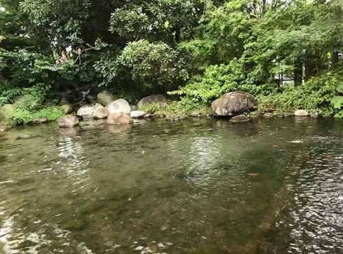 水辺のカフェテラス:池
