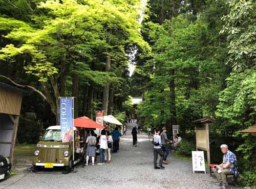 御岩神社:深緑