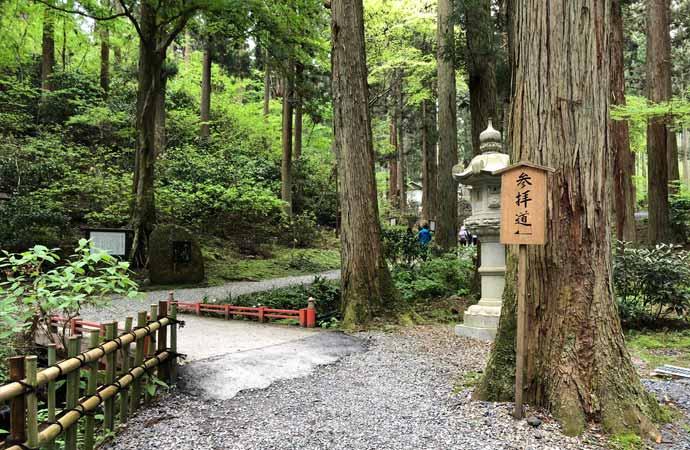 御岩神社:自然あふれる参拝道