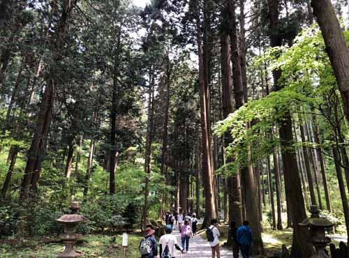 御岩神社:参道