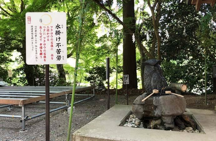 鷲子山上神社:水かけふくろう