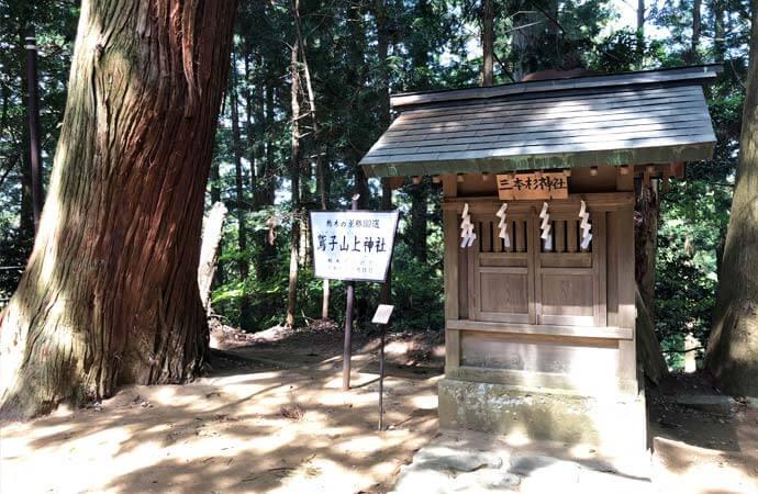 鷲子山上神社:三本杉神社