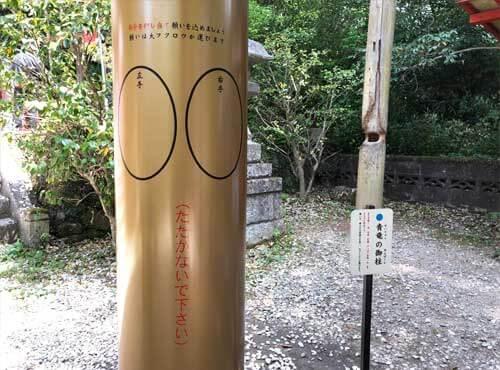 鷲子山上神社:青龍の御柱