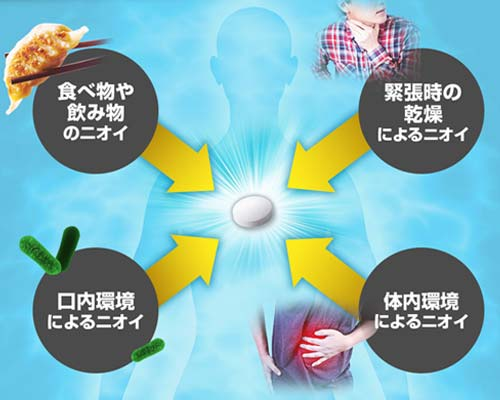 ブレスマイルは口臭の4大原因を改善させる成分が配合されている